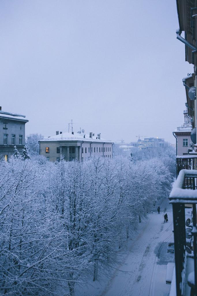 winter_minsk_by_palasatka_2015_1