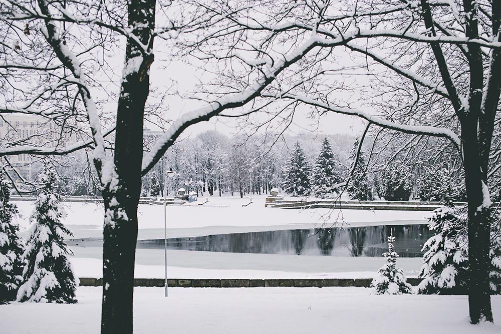 winter_minsk_by_palasatka_2015_13