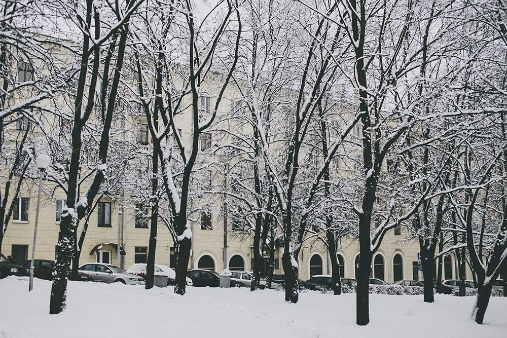 winter_minsk_by_palasatka_2015_15