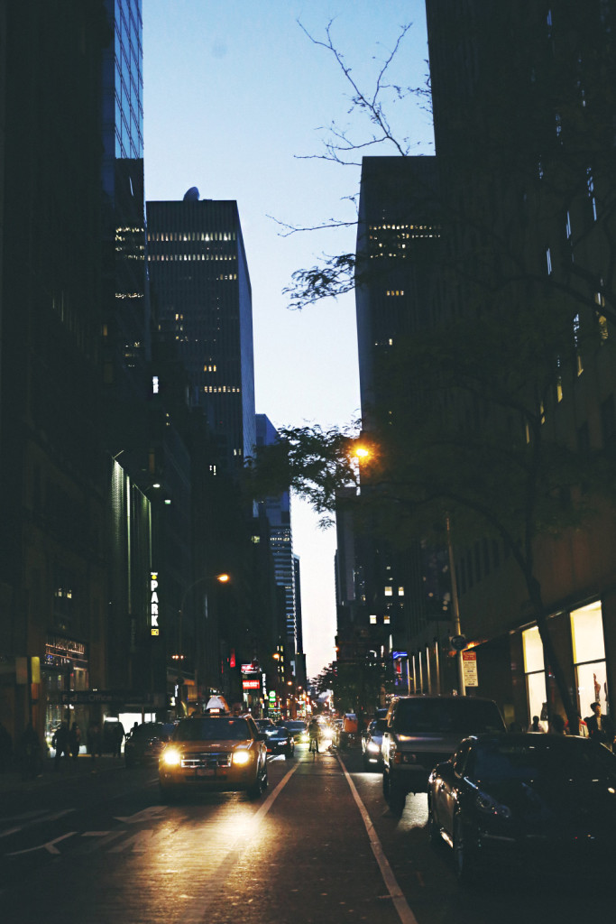 new_york_by_palasatka_p2_40