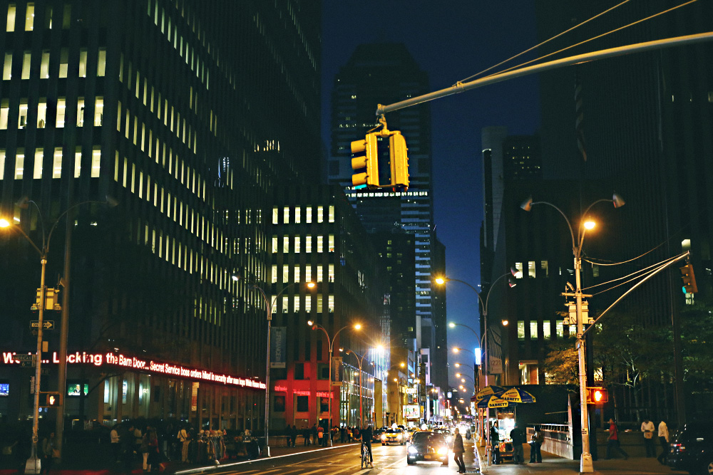 new_york_by_palasatka_p2_42