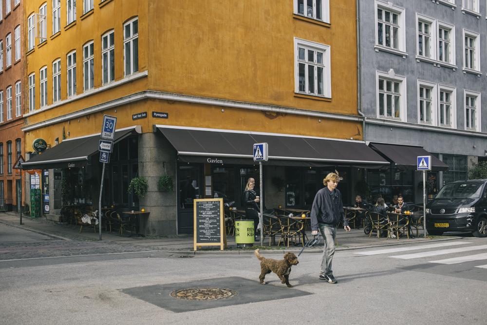 Copenhagen_by_palasatka_12