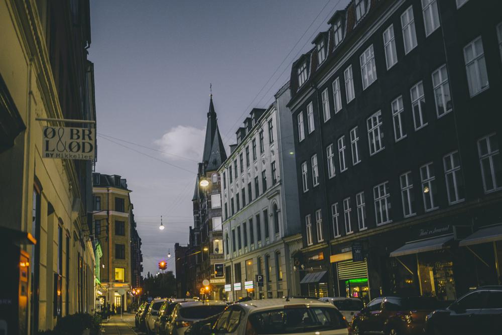 Copenhagen_by_palasatka_108