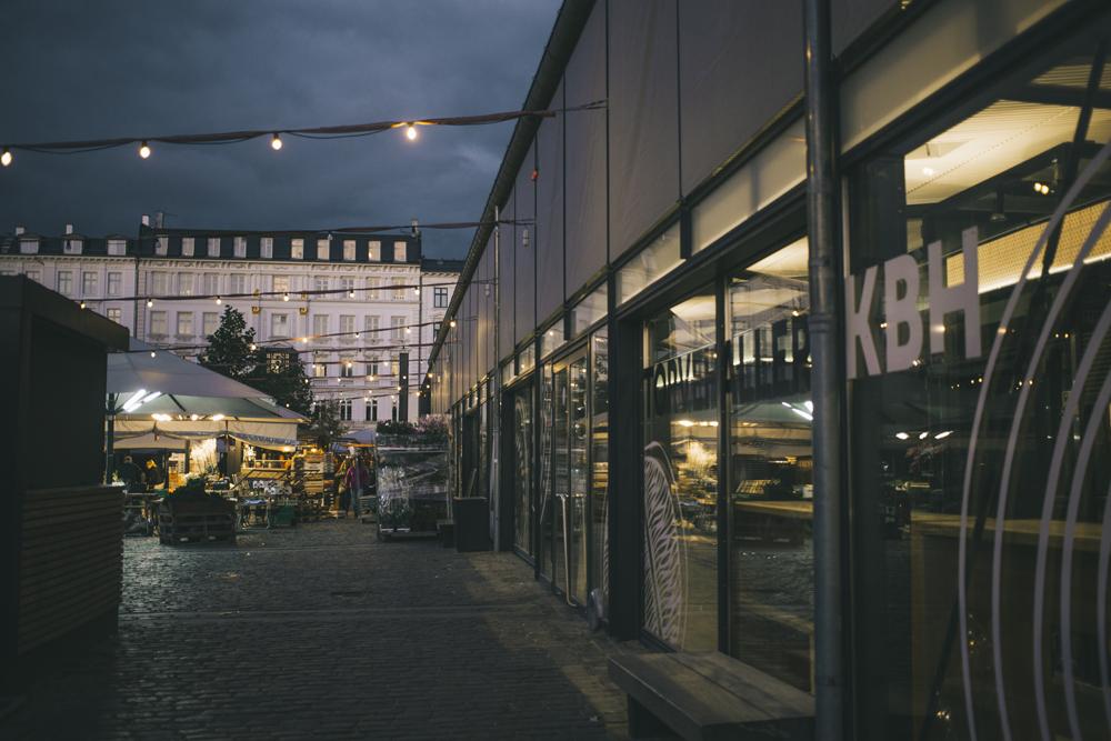 Copenhagen_by_palasatka_110