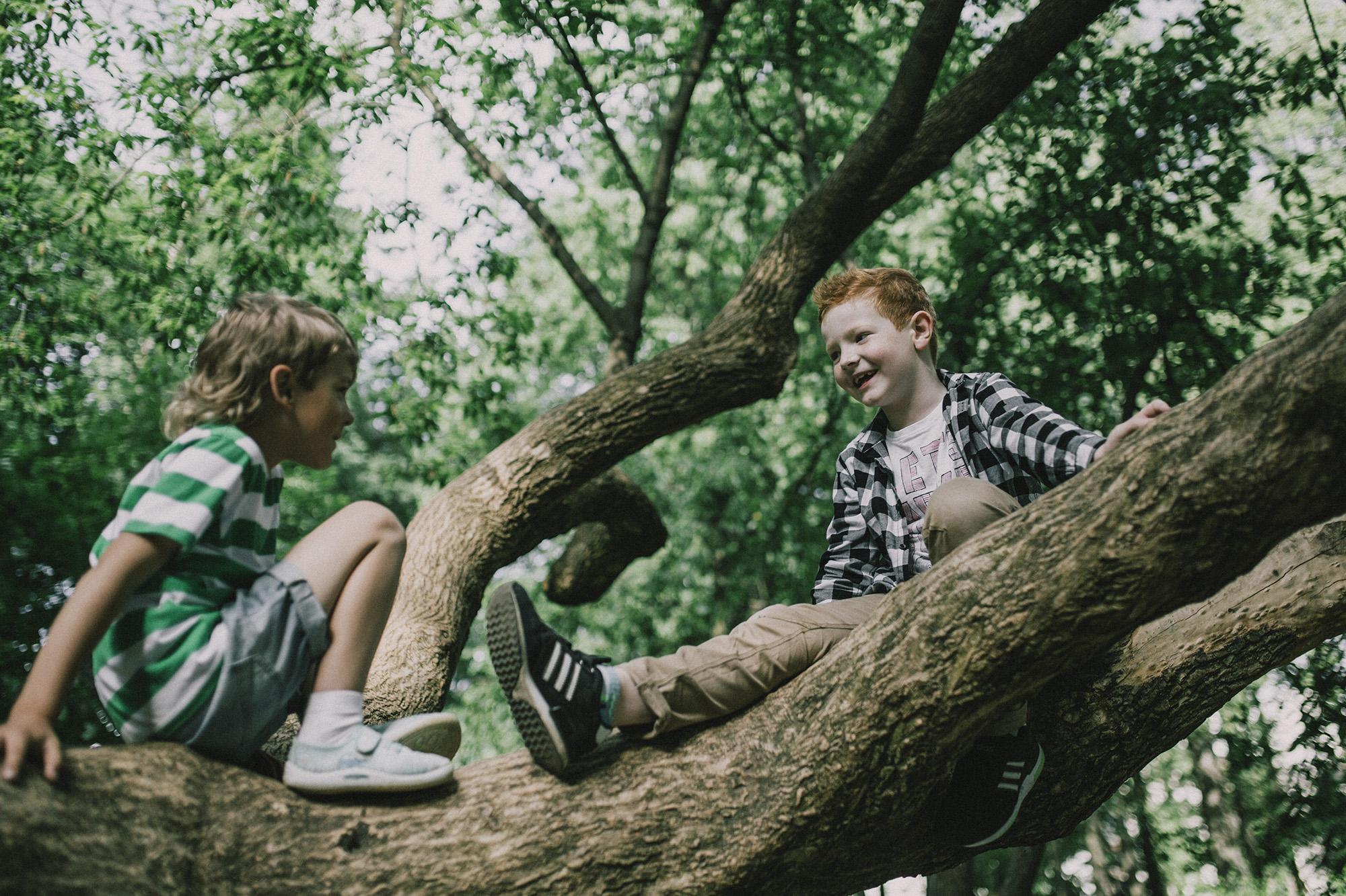 tree_6_s